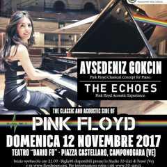 Aysedeniz Gokcin - The Concert